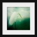 Wildlife Photography Bird Print, Heron, Egret Photograph