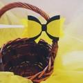 Emma inspired tutu and bow headband