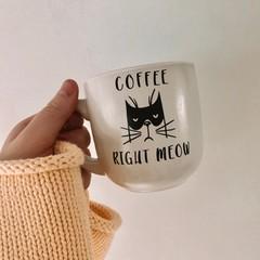 Right Meow Mug's