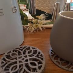 Hampton style Grey Felt Laser cut coasters