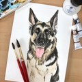 Custom Dog portraits in watercolour. Gift for Dog owner. Gifts for dog lovers