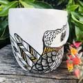 Kookaburra 🌟cup