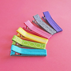 Set of 6 Gorgeous Hair Clips | Eleanor