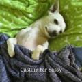 Custom for Sassy