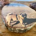 Pet Portrait - Custom Pet Keepsake, Photo on Wood Slice, Print on Wood