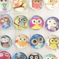 bird glass cabochon, glass dots, earring supplies, patterned owls, cabochon