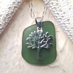 Seaglass  - Tree Olive