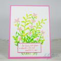 Encouragement Card, Flowers, Wildflowers Blooming