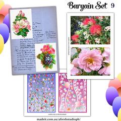 Bargain Set 9 AfreshDesignPB