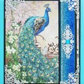 Ornate Peacock  - Lovely - Blank, Birthday, Thinking of you, Personalised