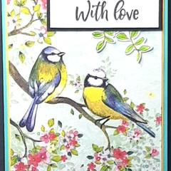 """""""Vintage Bird Family and Blossoms"""" - Blank Birthday Thinking of you"""