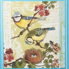 """""""Bird family with nest"""" - Blank Birthday Thinking of you"""