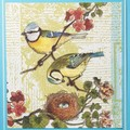 """""""Bird family with nest"""" - Blank, Birthday, Thinking of you, Personalised"""