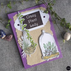 Greeting Card   Crazy Plant Lady - Free Shipping