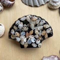 Tourmaline, Amethyst, Rainbow Moonstone, Aventurine, Selenite and Shell Pod