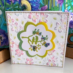 Greeting Card - Garden Birds on a Pastel Embossed Card for All Occasions