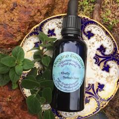 Oregano Tincture - Fresh Herb Tincture
