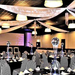 White Ceiling Draping #1486