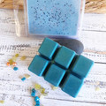 Asteroid - Blue Green Mica & Silver Soy Wax Melts - Light Fragrance