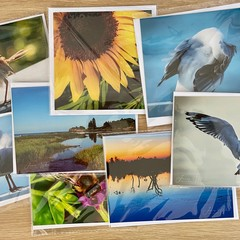 Six Card Pack - Variety of Covers - Square & Rectangle