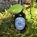 Brain Tonic- Nootropic Fresh Plant Tincture Blend