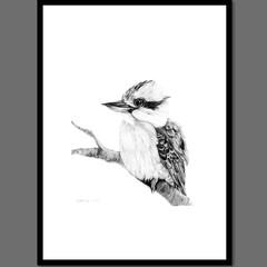 Australian Kookaburra Ballpoint Pen Print