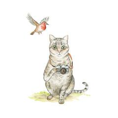 Art Print 'The Bird Watcher' A4
