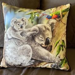 Koala Throw Cushion