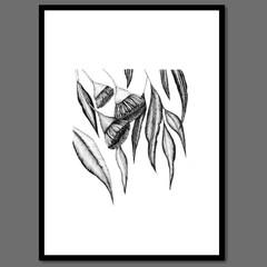 Australian Gum Tree Botanical I of II