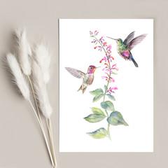Art Print 'Birds of the Air' - Hummingbirds