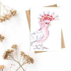 Greeting Card 'Major Mitchell Cockatoo'