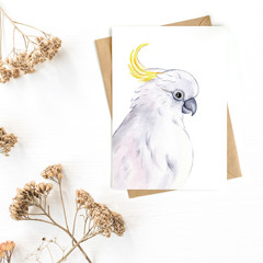 Greeting Card 'Sulphur Crested Cockatoo'