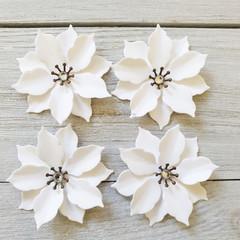 Mini Poinsettia Flowers