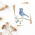 Greeting Card 'Splendid Fairy Wren'