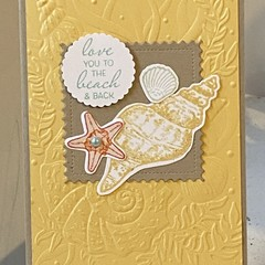 All occasion - Birthday Anniversary Handmade Card  - Seashells