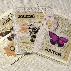 Set of 3 butterfly journals