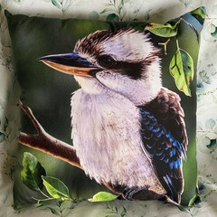 Kookaburra Throw Cushion
