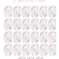 Butterfly Kisses Personalised Milestone Cards