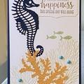 Birthday Handmade Card  - seahorse