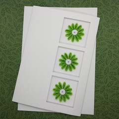 Trifold Card Daisies Lime Green