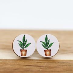 Wood Stud Earrings • Pot Plant • Surgical Steel • Eco Gift Ideas