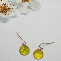 Lemon/Lime  Green Rose Gold Drops Finished in Resin