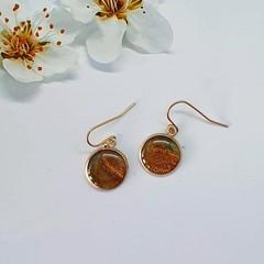 Brown Round Drop Earrings in Rose Gold