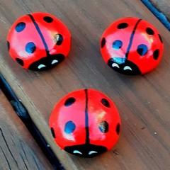 Fairy Garden Ladybugs, Set of 3 ,Fairy garden ornaments