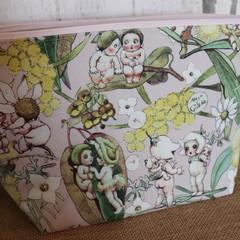 Medium Toiletry bag- May Gibbs Pink