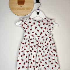 The Lilly Dress - Little Lady Bugs - Size 0