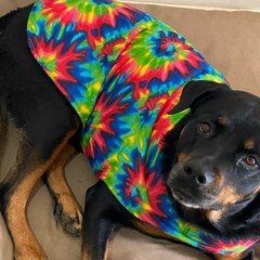 READY MADE Dog Coats ALL SIZES BRIGHT TIE DYE FLANNELETTE & FLEECE