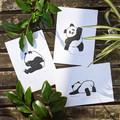 Individual Pandas