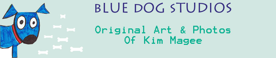 Blue Dog Studio