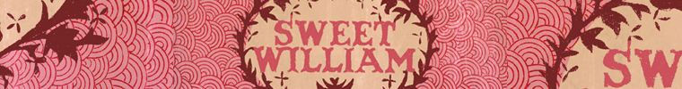 Lovely Sweet William